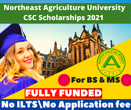 Admissions Started   CSC Scholarships at Northeast Agriculture University 2021   Careers Helpline